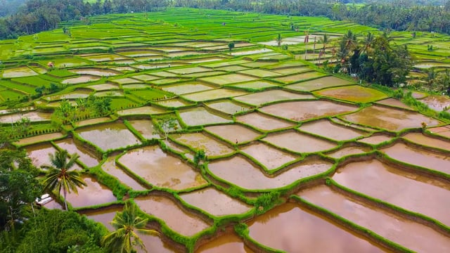 Bali from Above - Short Relax TV