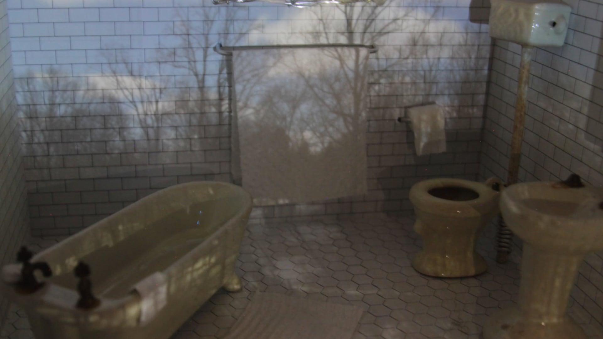 Toilet Daydreams