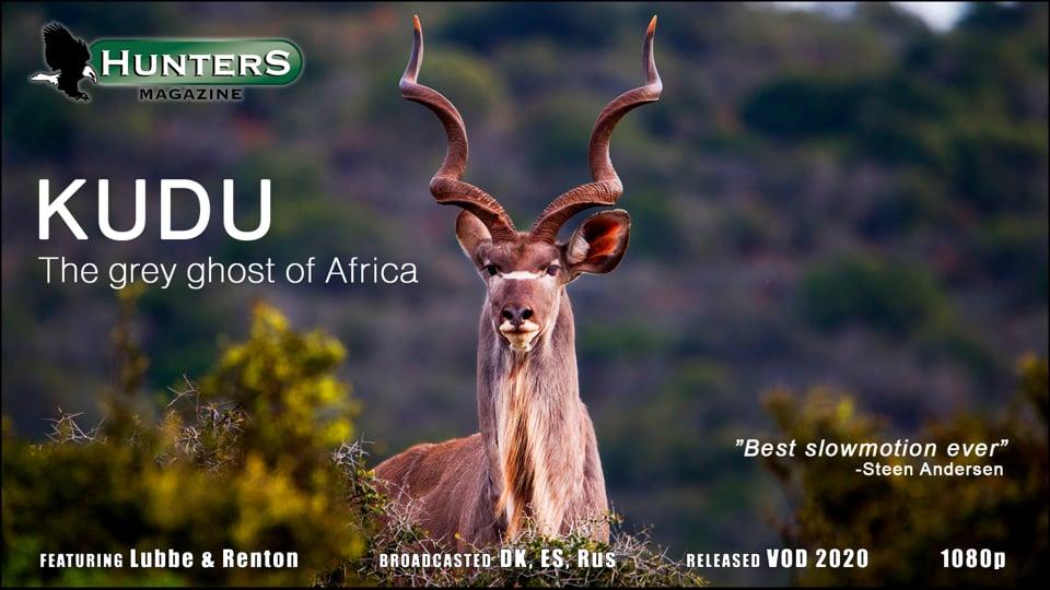 Kudu hunt in South Africa