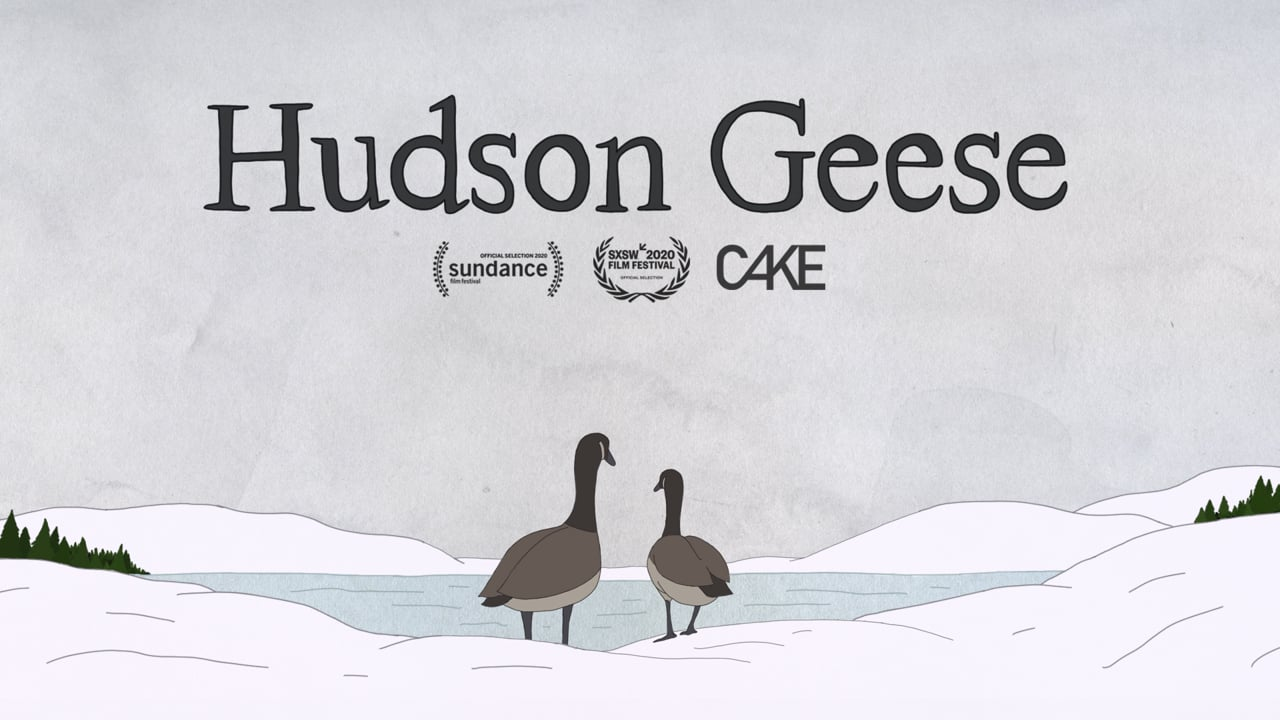 Hudson Geese | Short Film of the Day