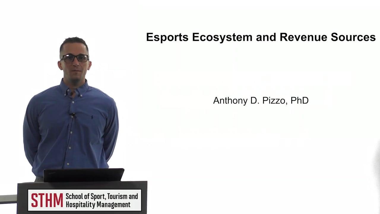 61852Esports Ecosystem and Revenue Sources