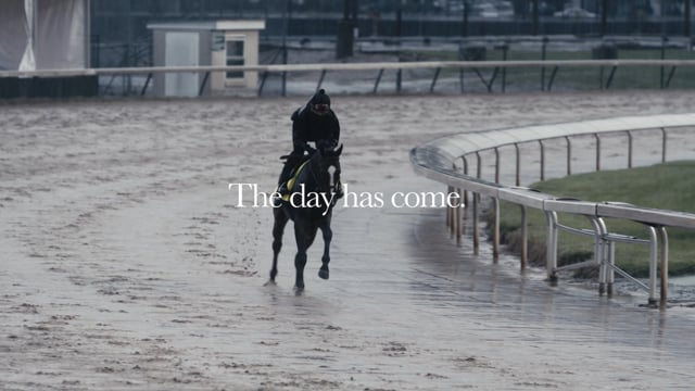 Thousand Words road to the 2020 Kentucky Derby