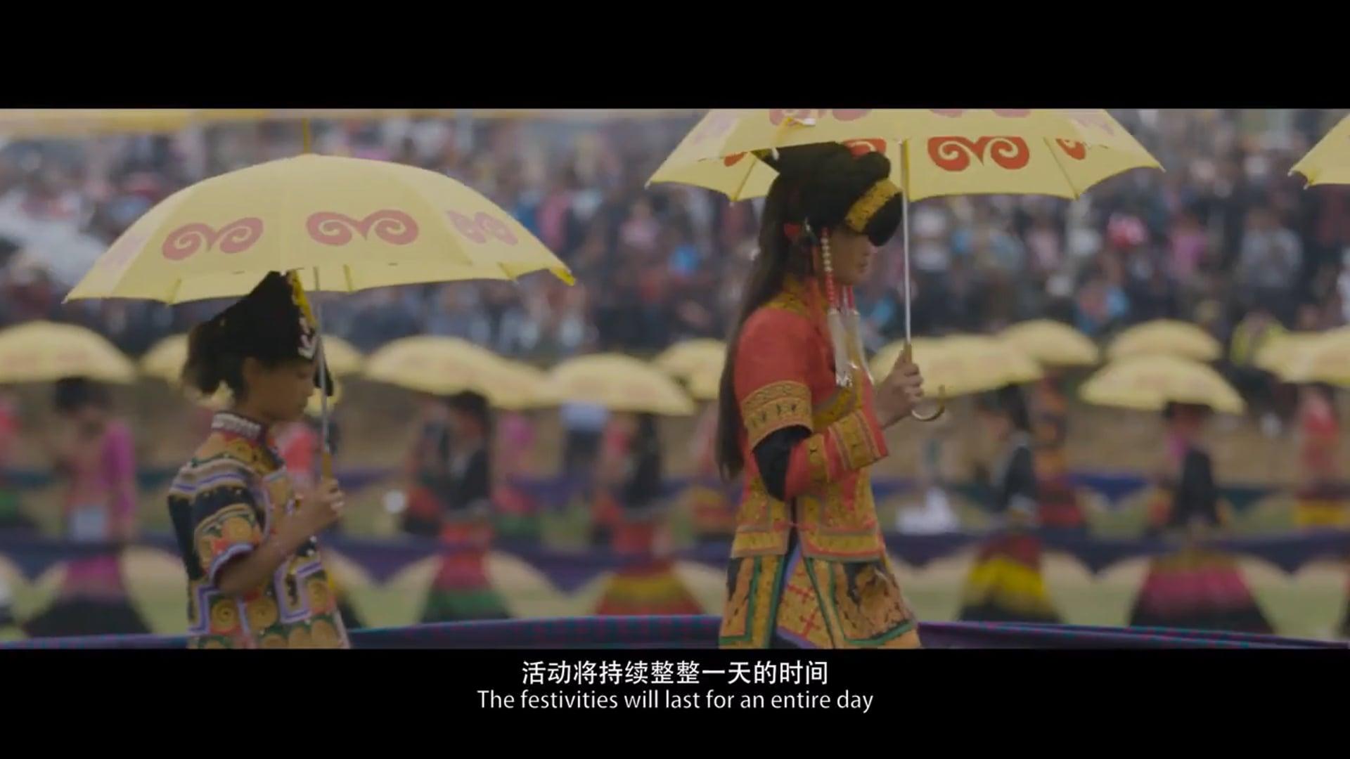 Beauty of China-Fire Revel