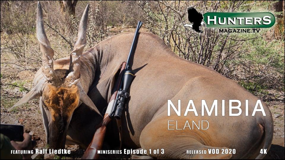 Namibia - Eland