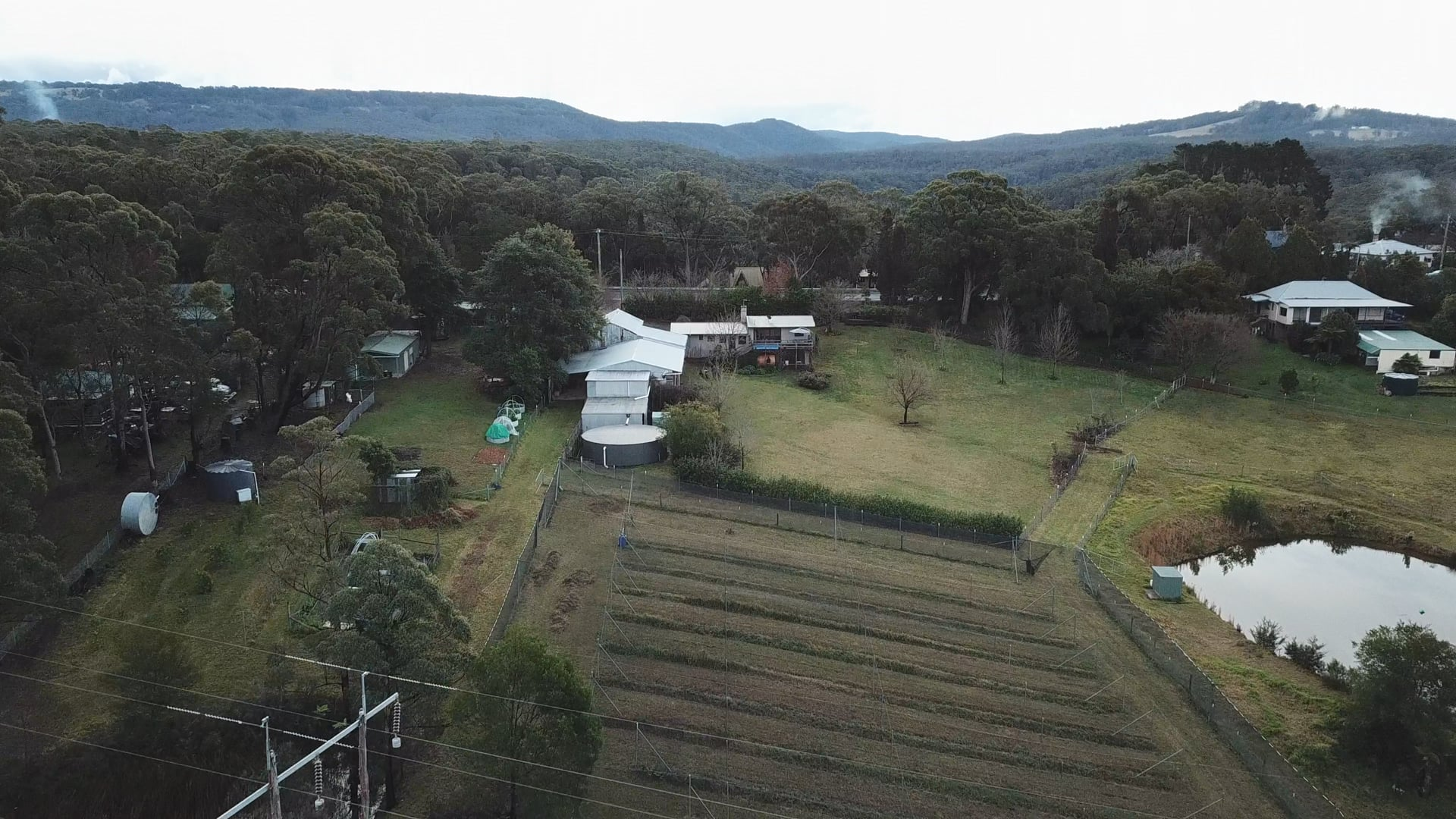 """Mountain Spring Monastery aerial footage - over the """"ancestors grove"""""""