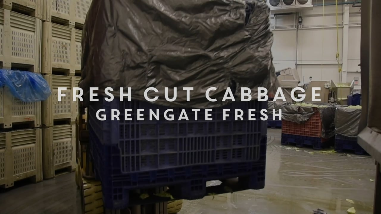 Fresh Cut Cabbage from GreenGate Fresh