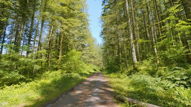 Nature Walk through Iron Horse State Park - Nature Walking Tour