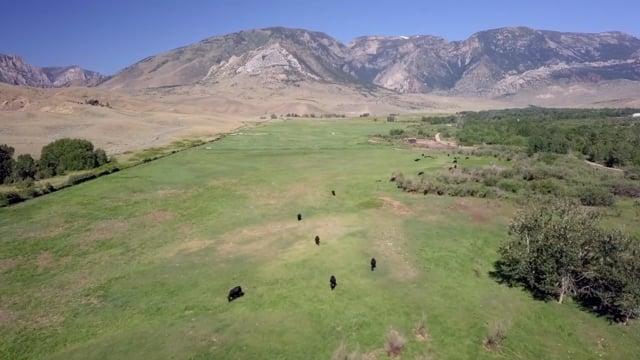 The Historic Tolman Ranch  |  Clark, Wyoming