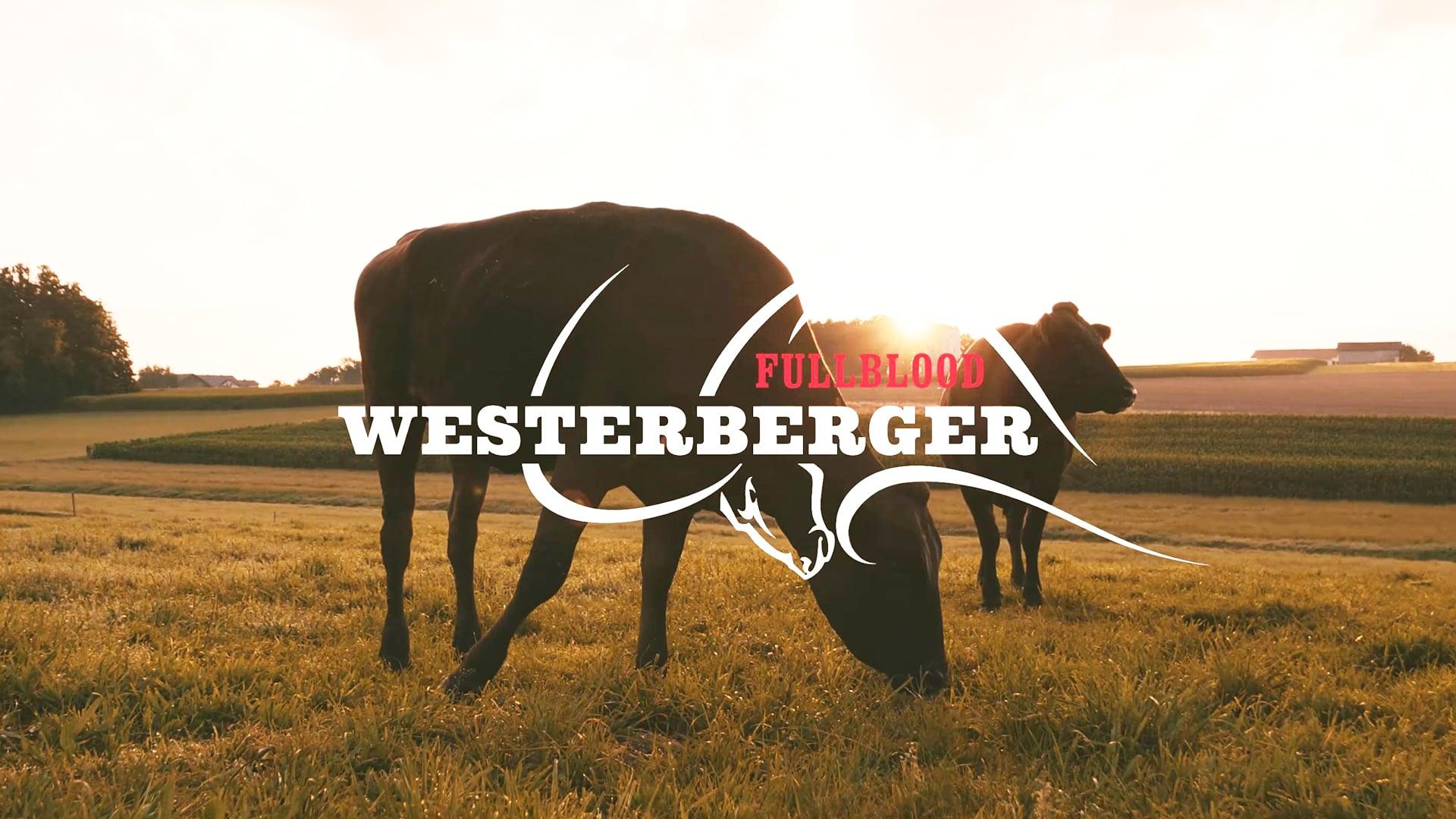 Imagefilm: Westerberger Episode 1
