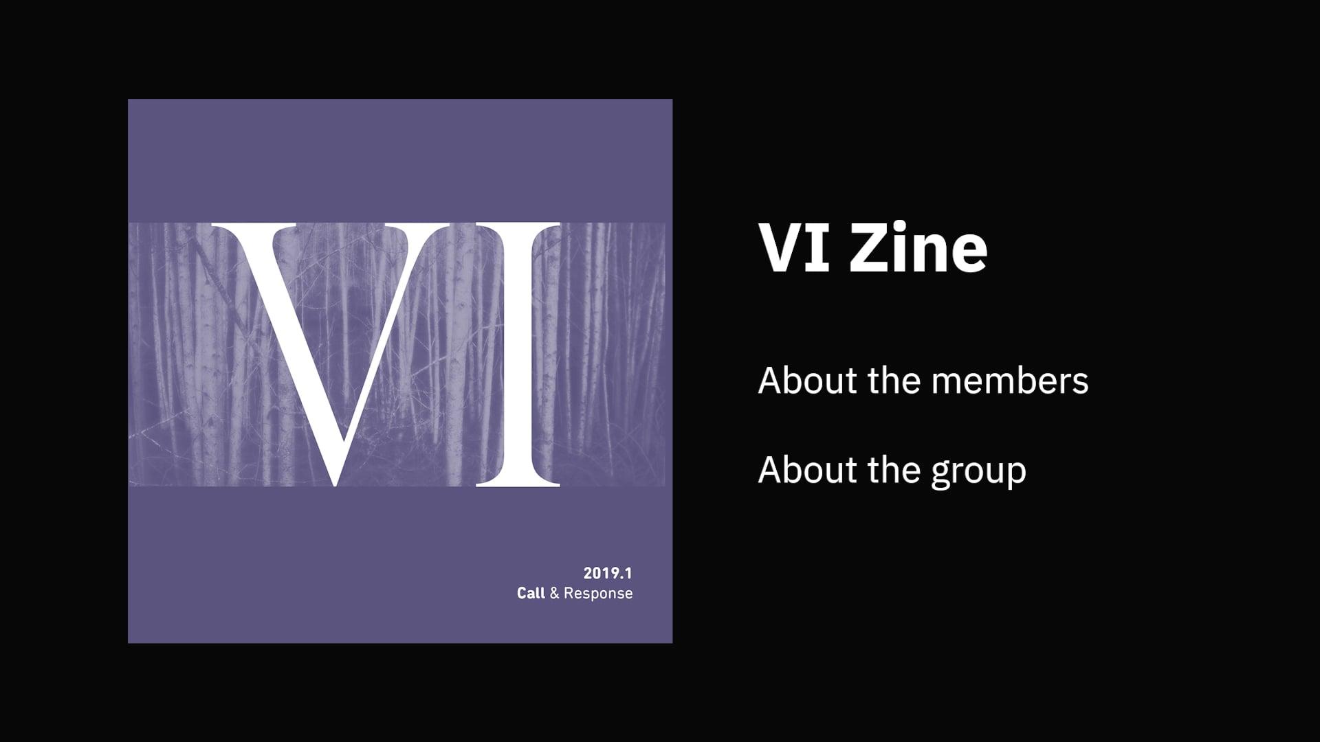 About VI Zine