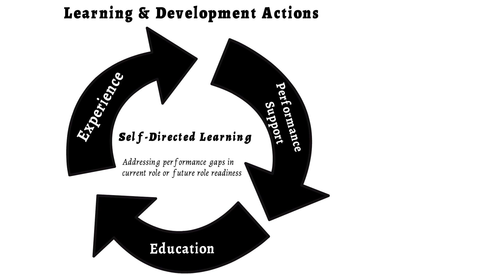 Learning and Development in the Career Optimiser
