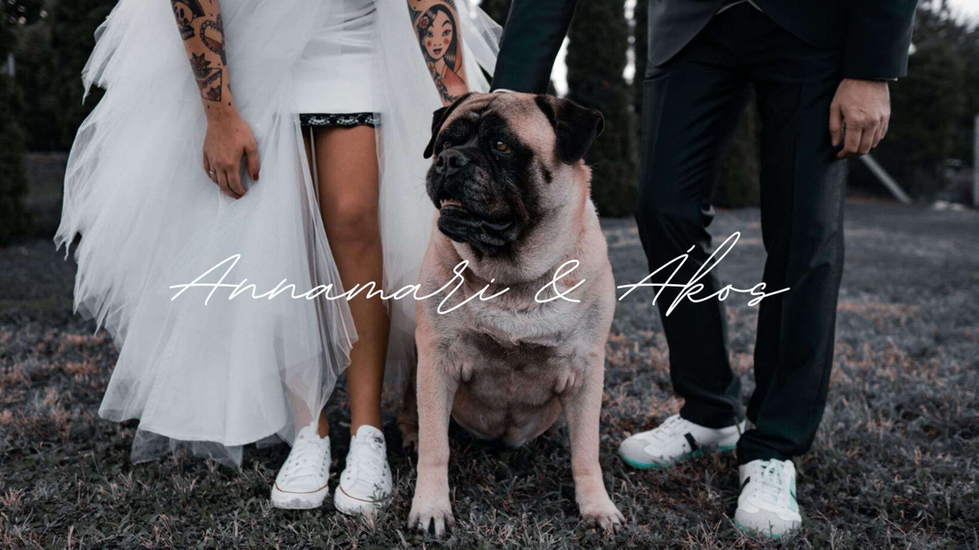 Annamari & Ákos I Wedding highlights