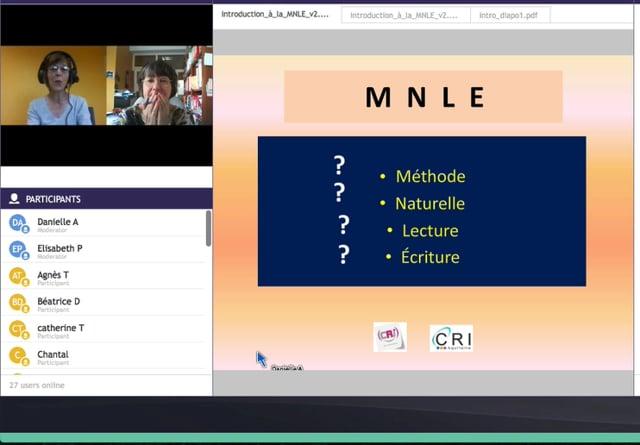 Qu'est-ce que la MNLE - E. Pelloquin - intro webinaire 4 juin 2020