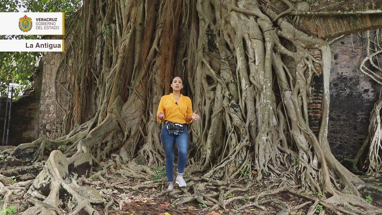 Orgullo Veracruzano: La Antigua