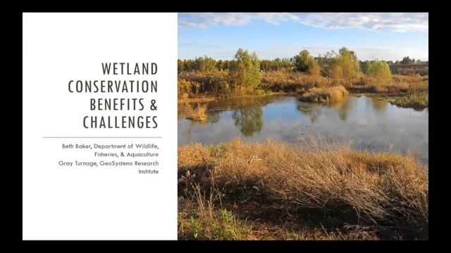 Wetland Conservation Benefits and Challenges - 9-22-20