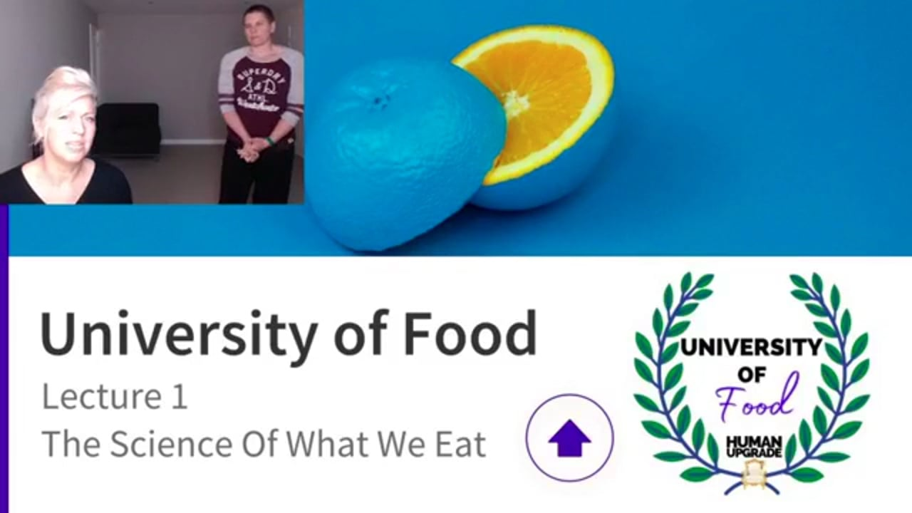University Of Food Lecture 1