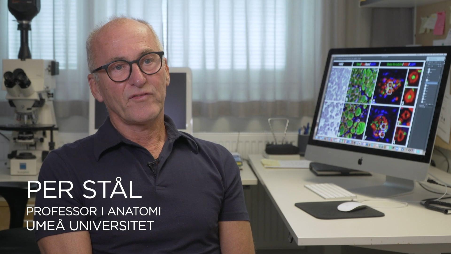 Film: Om Per Ståls forskning