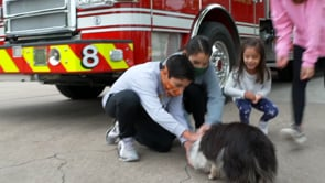 Local Fire Stations offer Microchip Scanning