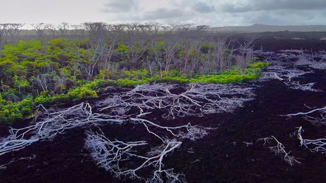 Bird's Eye View of the Big Island, Hawaii Part 2 - Incredible Lava Fields - Aerial Relax Video Trailer