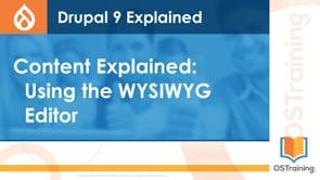 Using the WYSIWYG Editor