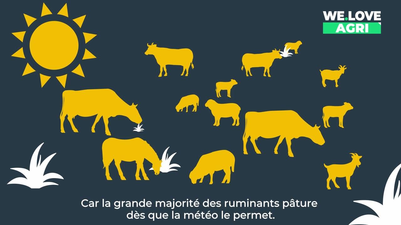 [Prends-en de la graine !] : C'est comment une ferme en France ?