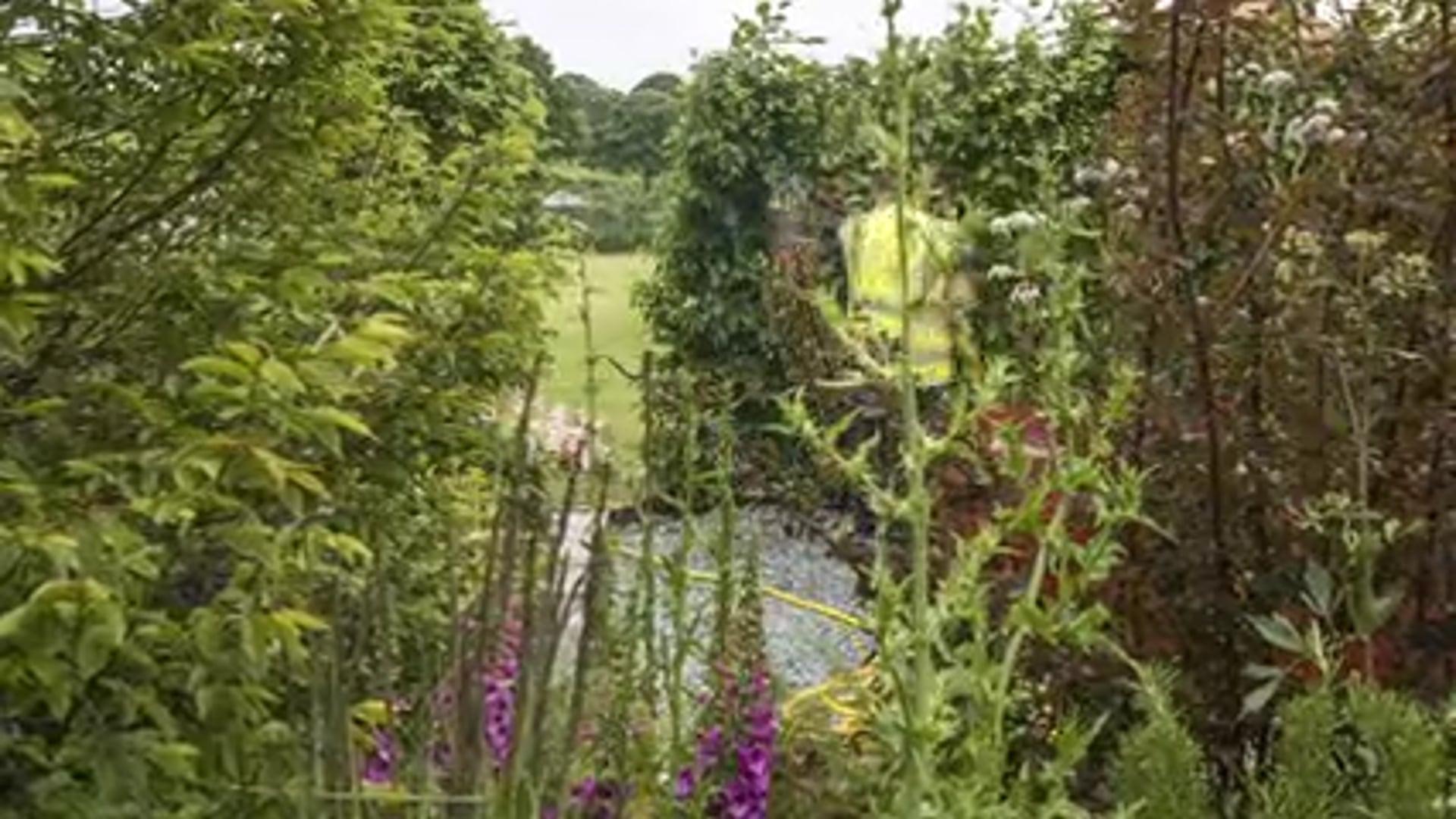 The Brewin Dolphin Artists Garden | RHS Chatsworth 2019