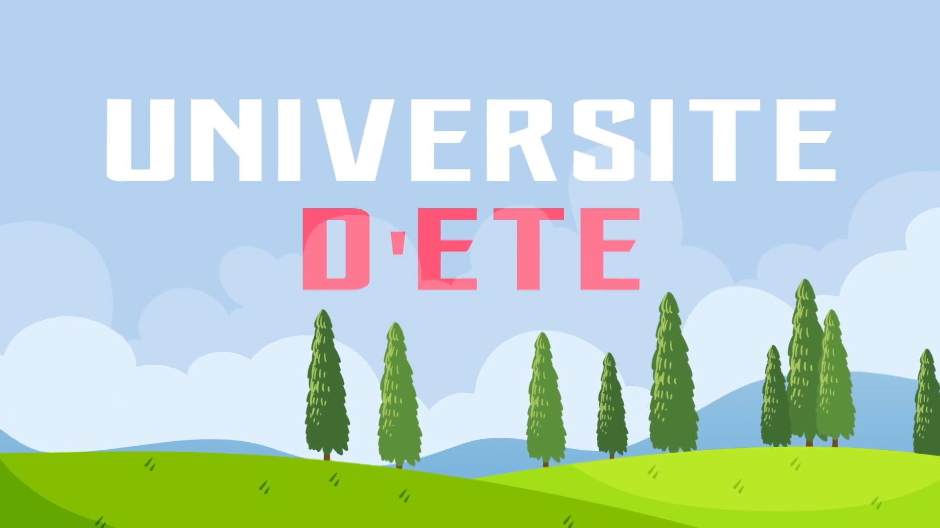 UNIVERSITE D'ETE