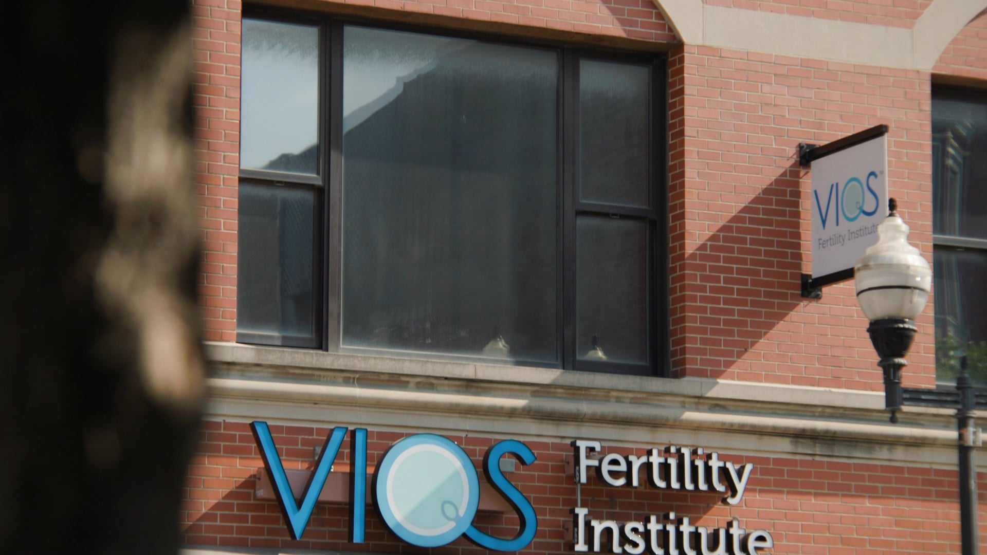 The Why of Vios Fertility