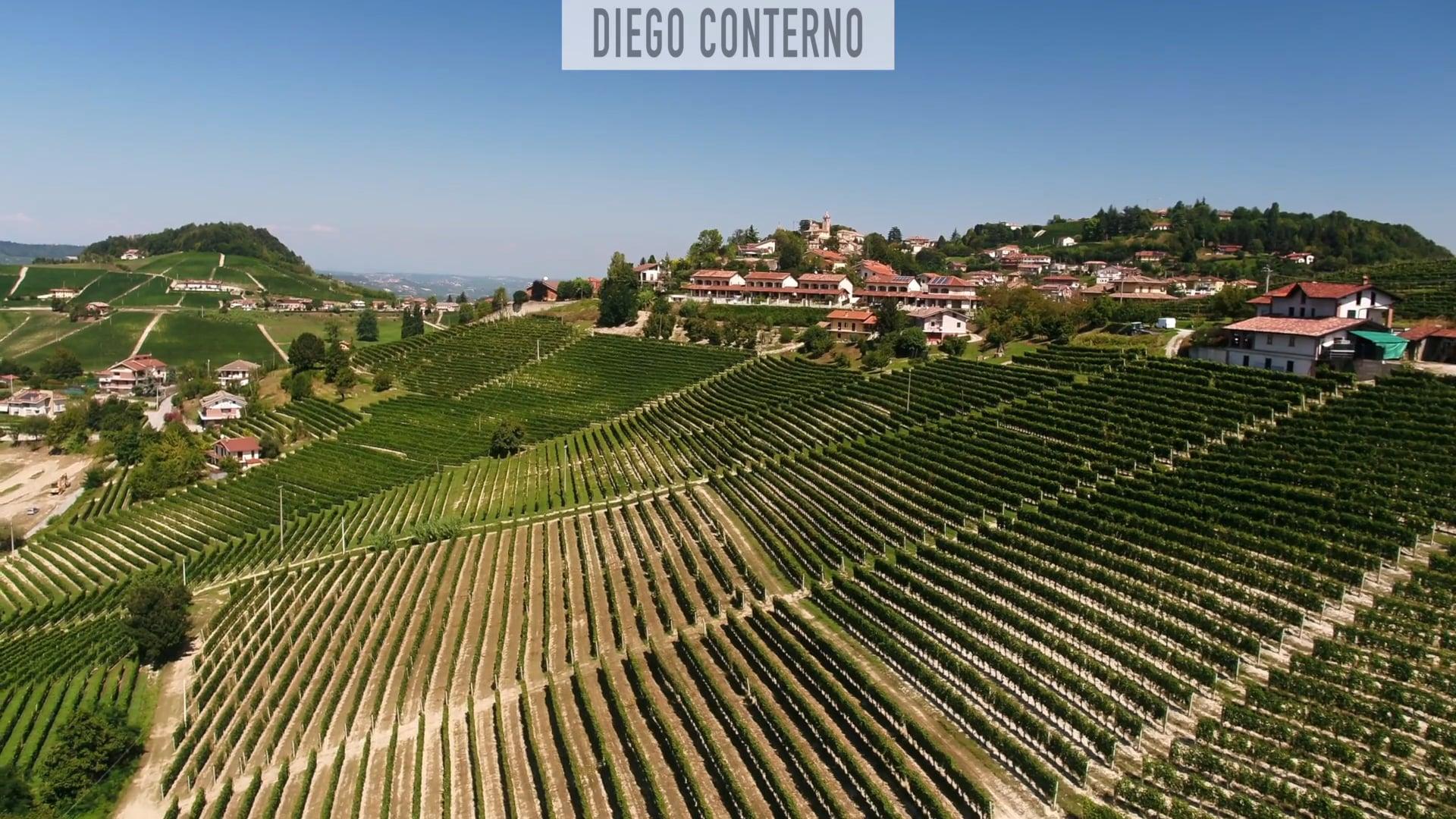 Diego Conterno | Il vigneto di Monforte d'Alba |  The vineyard of Monforte d'Alba