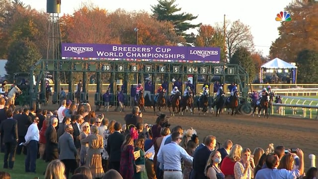 Authentic | Breeders' Cup Classic 2020