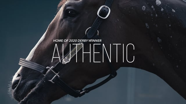 Home of 2020 Derby Sire INTO MISCHIEF & Kentucky Derby winner AUTHENTIC