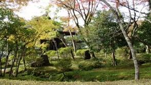 JAPON, LA FOLIE DES COURSES