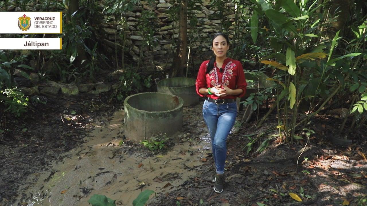 Orgullo Veracruzano: Jáltipan