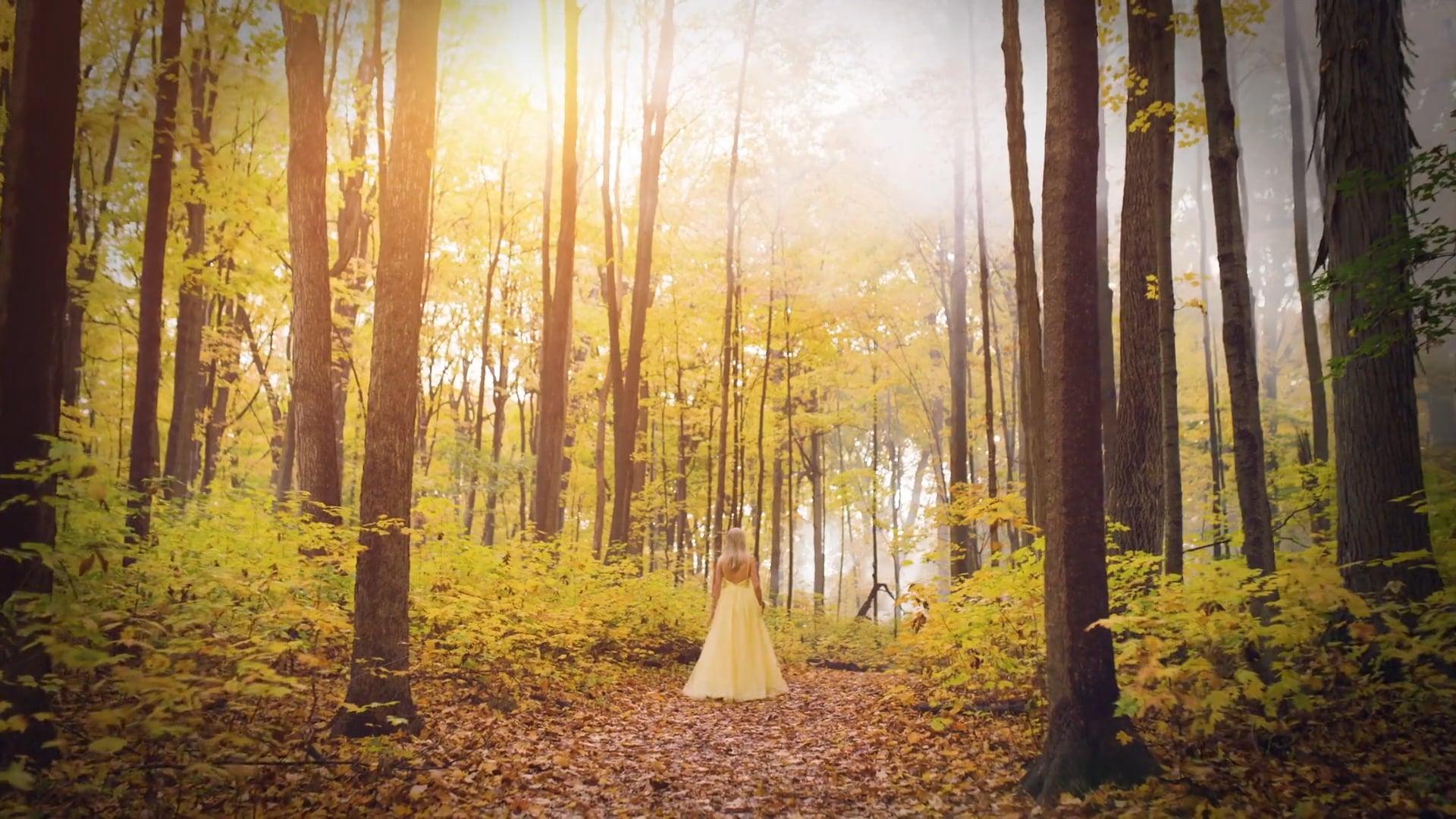 """Woods""          Agency: Brogan & Partners"