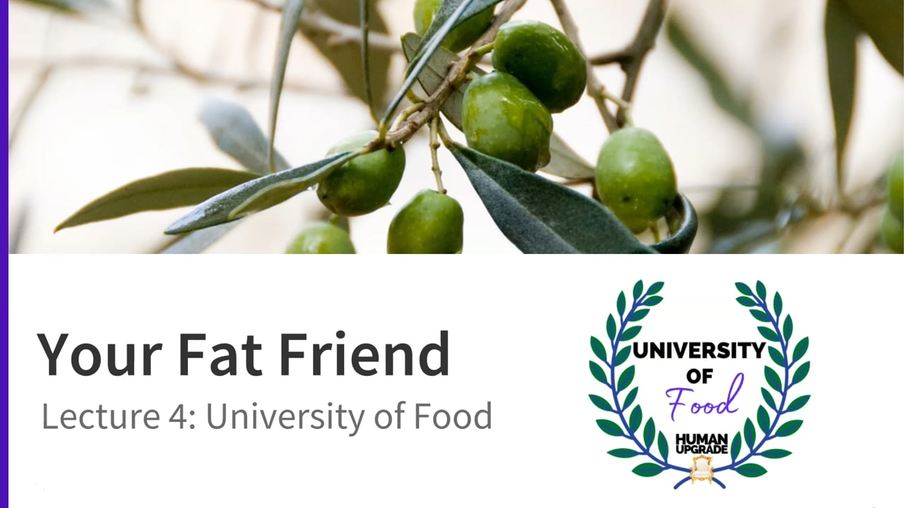 University of Food: Lecture 4: Fats