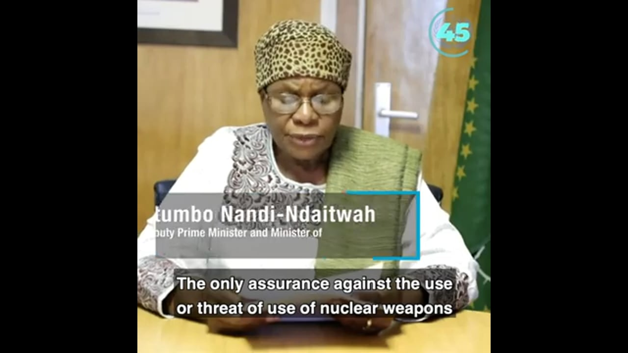 Nuclear Disarmament and the UN
