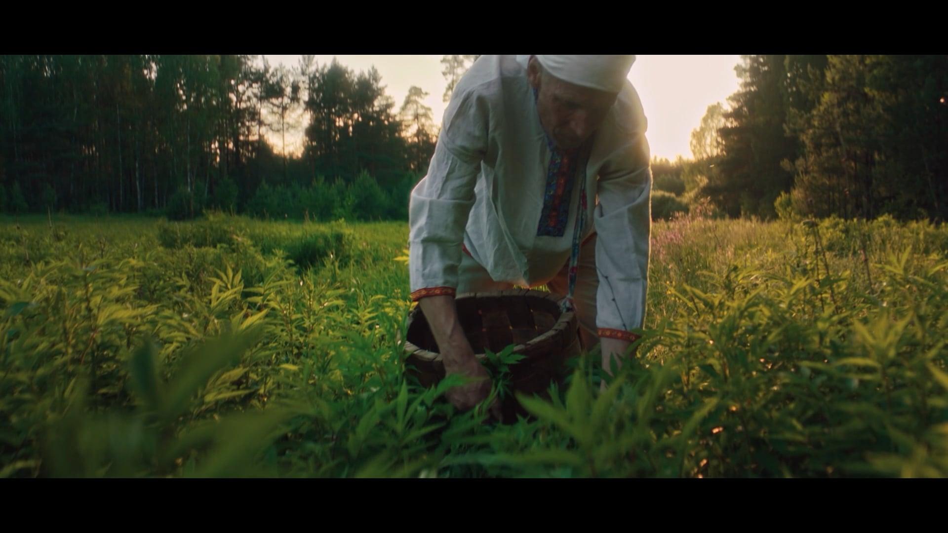 РСХБ2020. 20 ЛЕТ РОСТА. Документальный фильм про сельское хозяйство России