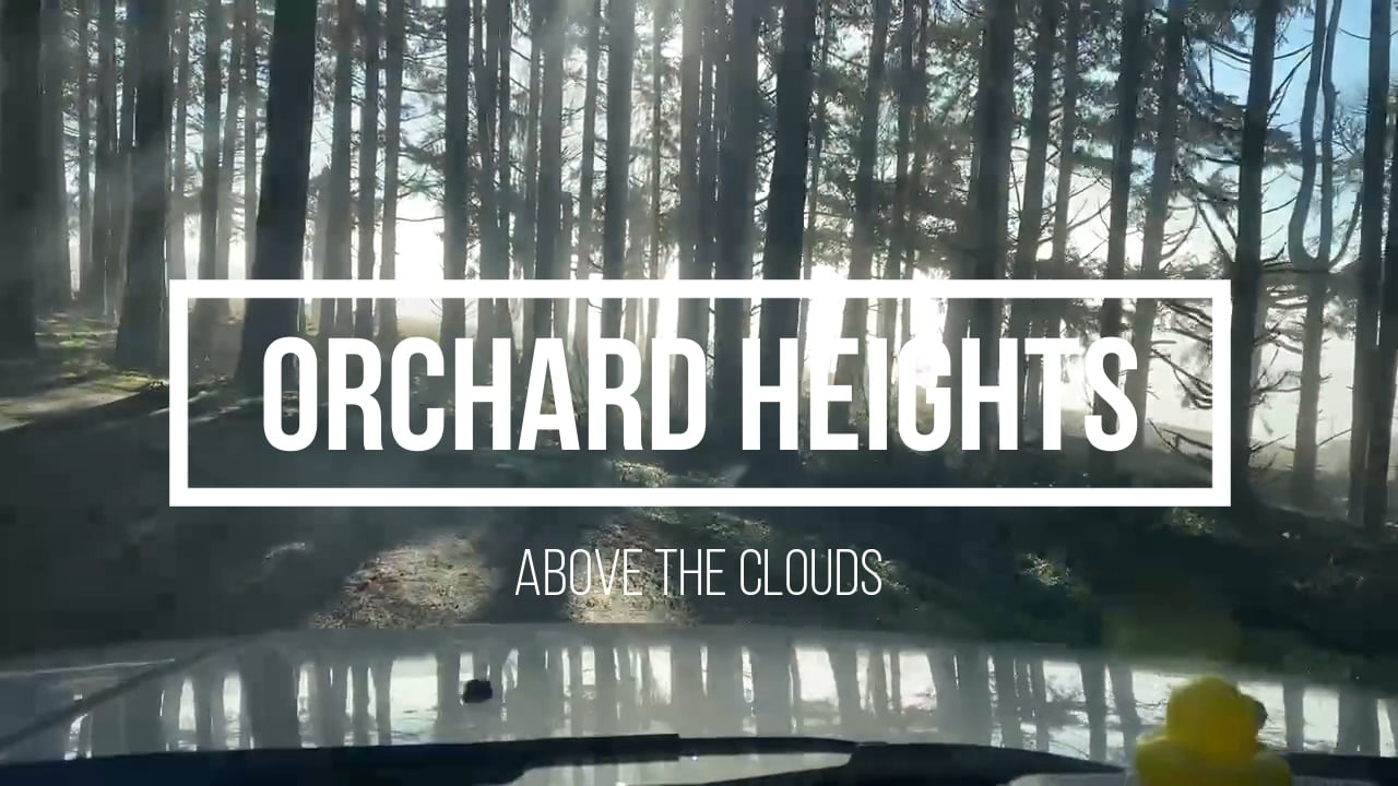Orchard Heights Above the Clouds