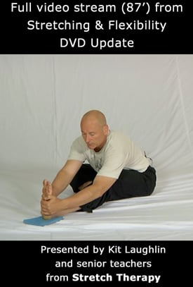 stretching and flexibility kit laughlin pdf