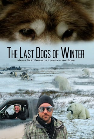 snow dogs full movie watch online free