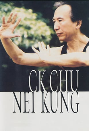 Watch Nei Kung: Introduction Online | Vimeo On Demand