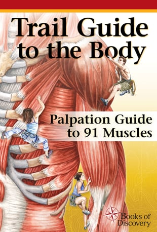 Watch Trail Guide to the Body Palpation Guide to 91 Muscles Online ...